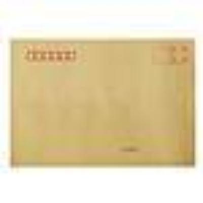 得力25201牛皮信封(混)-9号(40个/包)(单位:包) 100127340